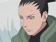 Наруто: Ураганные хроники [ТВ-2] / Naruto: Shippuuden [500/500] (RUS)